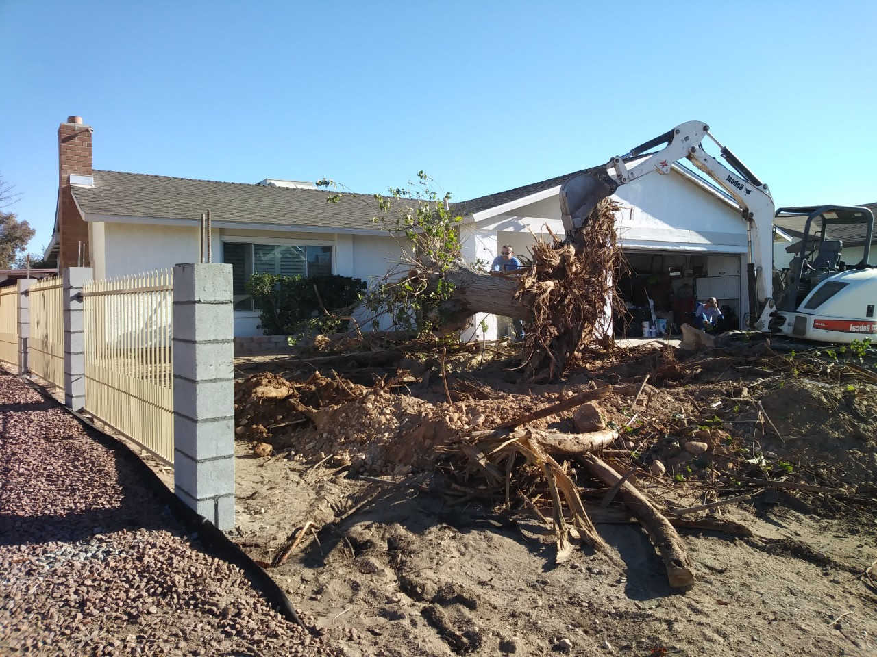 Lot clearing of multiple trees and their roots prior to construction by Garden Grove Tree Service.